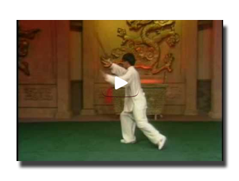video epee